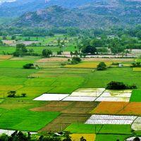 فروش زمین کشاورزی ویژه
