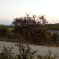 فروش ویژه زمین در قائمشهر