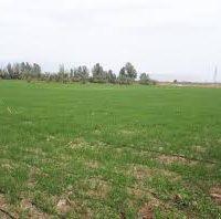 70هکتارزمین کشاورزی استان مرکزی