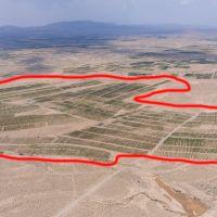 106هکتار زمین کشاورزی پسته در یزد
