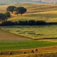 فروش زمین کشاورزی در قم دشت طغرود