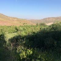 20 هکتار مزرعه با شرایط استثنایی