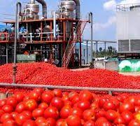 فروش کارخانه رب گوجه فرنگی در تهران