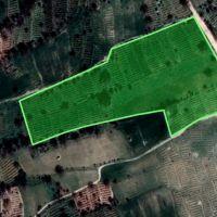 ۲۶۰۰۰متر باغ و زمین کشاورزی