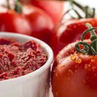 2هکتار کارخانه انواع رب گوجه ظرفیت روزانه500تن گوجه فروشی