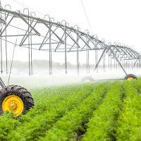 ۲۱هکتار زمین کشاورزی بر جاده مرند ترکیه