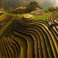 فروش ۱۵ هکتار زمین کشاورزی و صنعتی