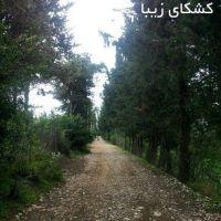 فروش زمین با 200 متر کاربری مسکونی در مازندران