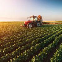 فروش زمین کشاورزی در استان قم