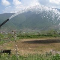 12 هکتار زمین کشاورزی فروشی  در نوشهر