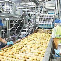 فروش کارخانه مواد غذایی در قم
