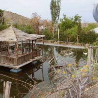 زمین 80 هکتاری دهکده توریستی فیروزکوه