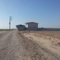 فروش مزرعه شترمرغ در سمنان